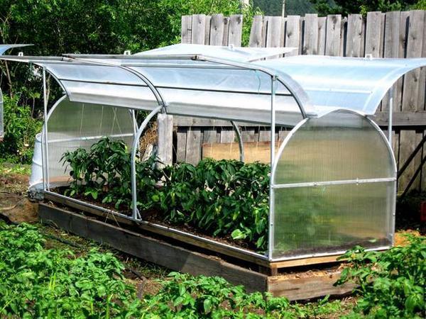 Мини-парник, сделанный на участке дачи своими руками – прекрасная возможность для выращивания крепкой рассады или ранних овощей