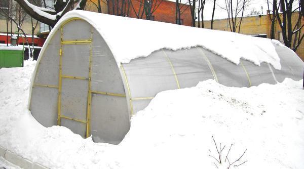 Если в теплице есть отопительное оборудование, то зимой ее следует открывать только для проветривания