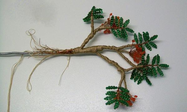 Формируя крону будущего дерева, следует обязательно учесть, что верхние ветки должны быть намного короче тех, что расположены ниже