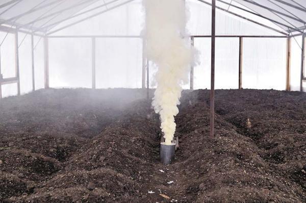 Дляпредотвращения грибковой инфекции используют серные шарики