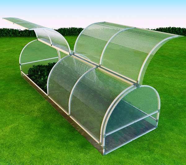 В нашем суровом климате, где весеннее тепло чередуется с заморозками, теплица является единственным способом защиты растений от погодных капризов