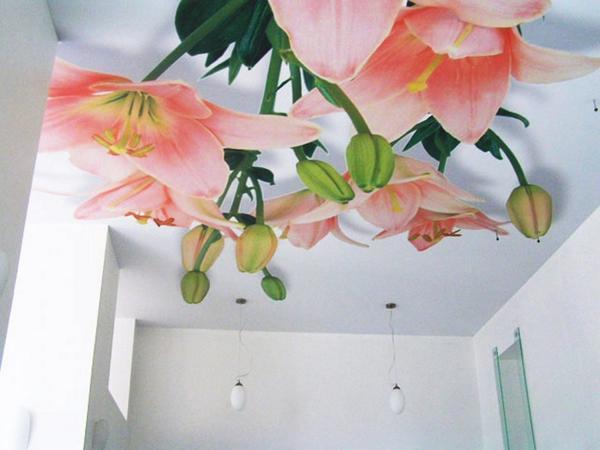 Сделать помещение более «живым» можно легко: достаточно поклеить на потолок яркие фотообои