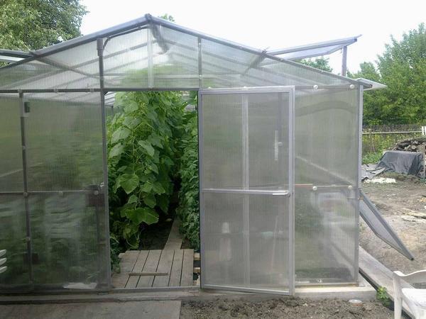 Рекомендуется выбирать прозрачный сотовый поликарбонат, так как он хорошо пропускает солнечные лучи в теплицу