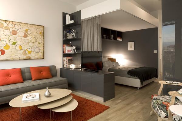 Разделение гостиной и спальни дает возможность в одной комнате не только отдыхать, но и принимать гостей