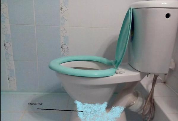 Запах канализации в ванной комнате: почему воняет
