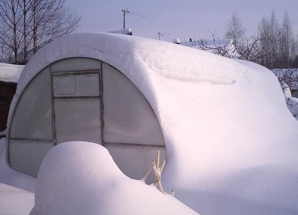 Чтобы в теплицу не попадал снег, ее нужно установить на каменный или бетонный фундамент