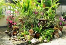 Landscape-My-Garden-house-001