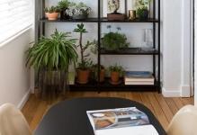 plants-interiordesignrulz-1-1
