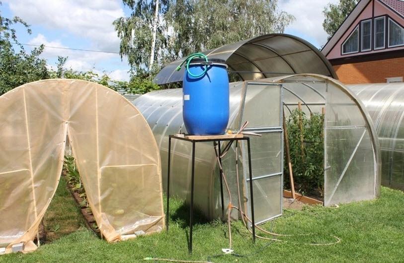 Как работает система полива водомерка