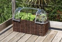 Burgon--Ball-Home-Allotment-Salad-Planter-with-Greenhouse-cover-open