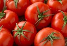 pomidorbetaluxr