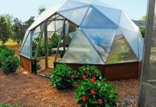 Backyard-Greenhouse-tumblrns4jzgOZgd1sj3j9oo11280