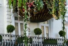 Оформление балкона цветами: 8 практических советов