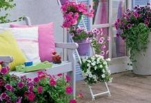 Beautiful-plants-on-the-balcony-03-1
