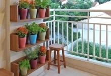 Beautiful-plants-on-the-balcony-03