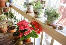 decorating-a-small-balcony-018