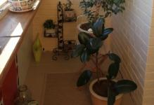 small-balcony-design-ideas-with-pot-plants
