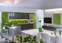 green-kitchen-zelyenaya-kuhnya