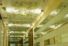 1215391087ceiling-from-glass-543