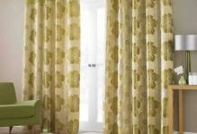 1365503548lana-green-readymade-lined-eyelet-curtains