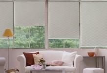 window-blinds-and-shades-6
