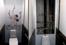 sovremennye-idei-dizajna-tualeta-55