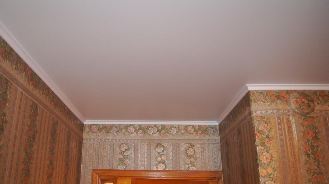 укус багет для натяжных потолков фото красноухие