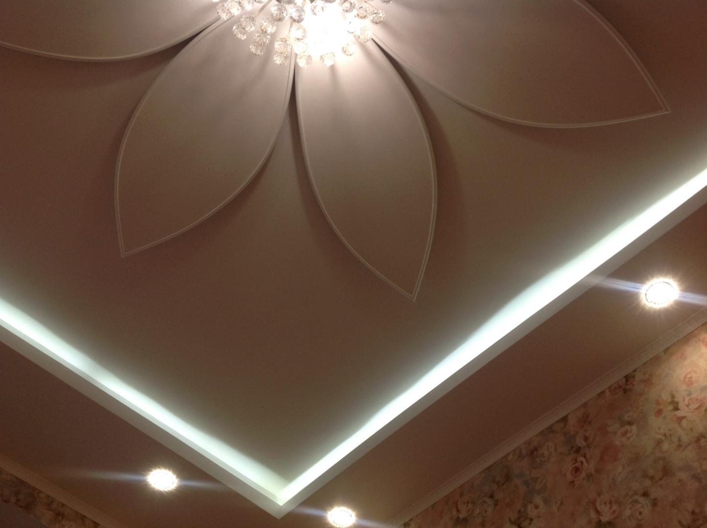 ремонтантный, плодоносит лампочки на гипсокартонные потолки фото истинных