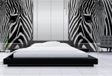 zebra-3248031