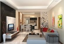 living-room-partition-nice-with-photos-of-living-room-style-on-design