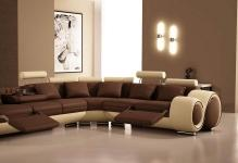 Modern-brown-living-room-painting-ideas-