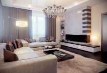 elegant-living-room-design