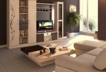 best-inspiration-cozy-functional-living-room-interior
