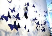 Панно из бабочек: 3 основные техники
