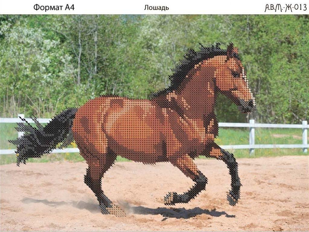 Лошадь с жеребенком схема вышивки фото 723