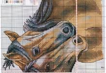 koni-shema-1