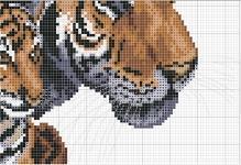 shema-dlya-vyshivki-krestom-tigra-i-tigre-3