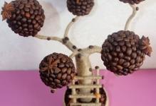 6723b177b36254068ba74c013arz--tsvety-floristika-topiarij-kofejnyj-baobab