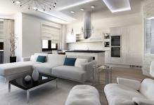 dizajn-kvartiry-studii-interer-kuhni-i-gostinoj-v31