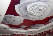 Как сделать самостоятельно потолок с фотопечатью