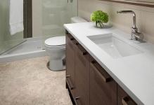 bathroomceilingthemaid