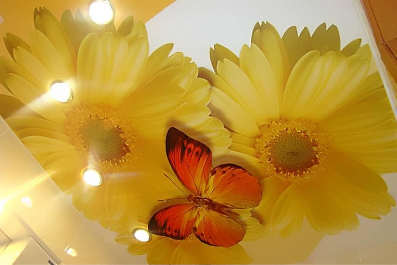 предоставляем вам натяжные потолки с фотопечатью цветы простому методу лечения