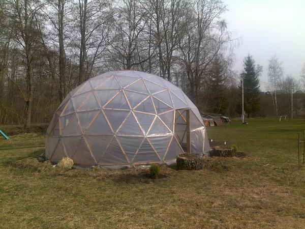 Теплица-купол, сделанная своими руками, должна располагаться на открытом, солнечном месте