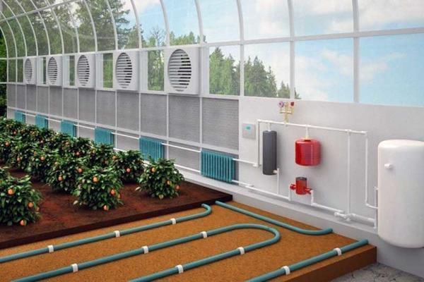 Электрическое отопление теплицы из поликарбоната позволяет выращивать растения зимой