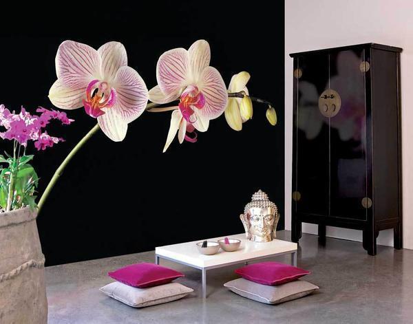 Обоями с орхидеями <a href=
