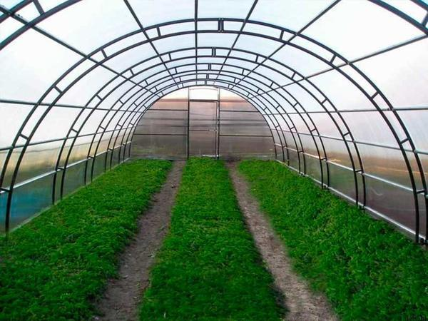 Для строительства фермерской теплицы следует подбирать прочный и надежный каркас