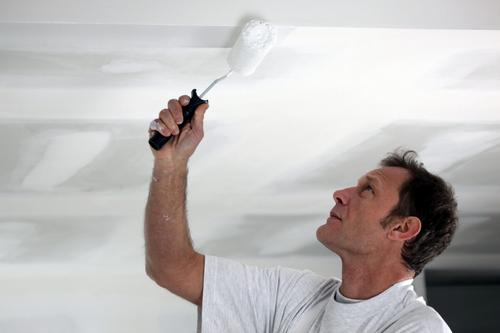 Побелка – самый экономичный и экологически чистый способ косметического ремонта потолка