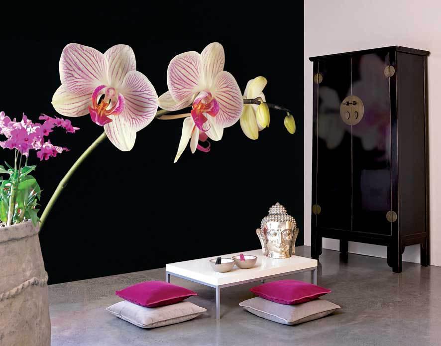 Обоями с орхидеями можно украсить интерьер любой комнаты