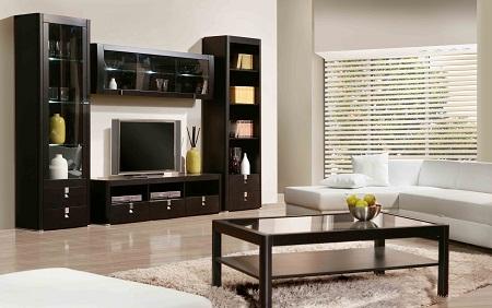 горка в зал фото мебели стенка под телевизор в квартире шкафов
