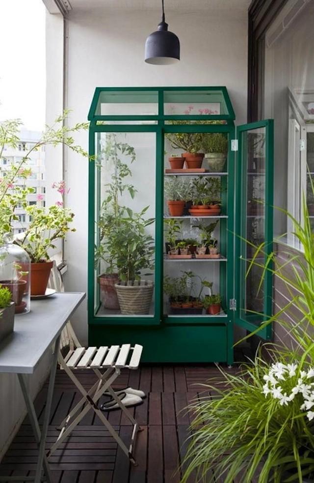 Теплица на балконе может стать отличным вариантом для садовода